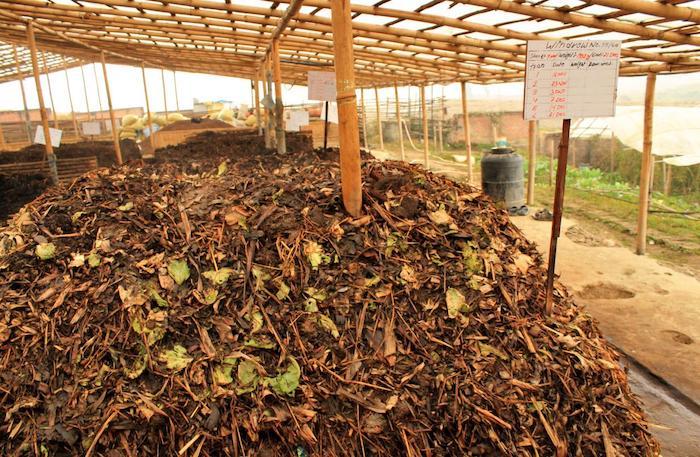 Ủ phân bón hữu cơ vi sinh là phương pháp được các nhà nông lựa chọn để tiết kiệm chi phí và mang lại hiệu quả cao.