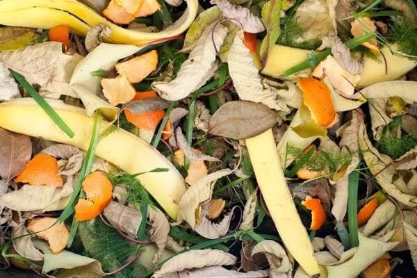 Chuẩn bị, phân loại nguyên liệu là bước quan trọng trong quá trình ủ phân hữu cơ trước khi bón.