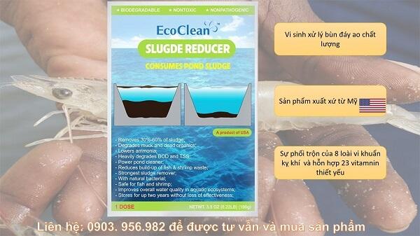 Men vi sinh EcoClean Slugde Reducer
