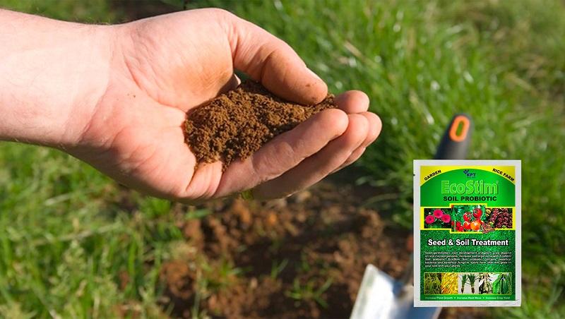 Chế phẩm vi sinh cải tạo đất EcoStim giải pháp hiệu quả cho bà con nông dân